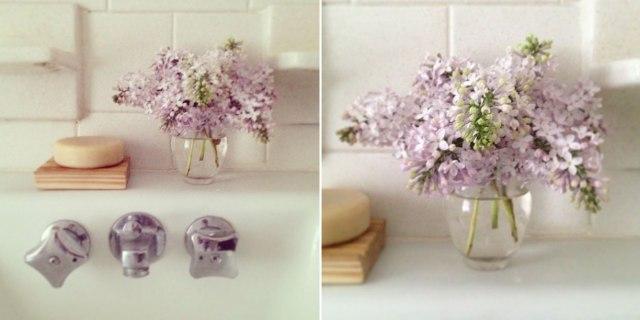 instagram-lilacs