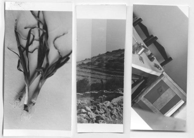 Trio-test-prints