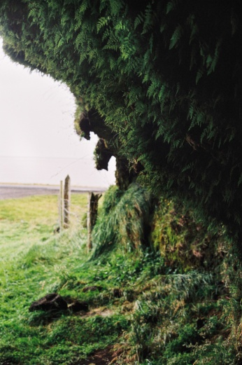 Iceland0915_EDITWEB-1000001