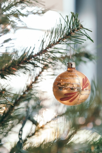 hopestatestyle_roughpoint_dorisduke_christmas-37